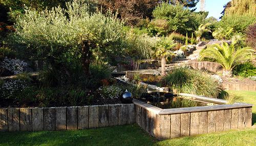 Jardin en cours de création